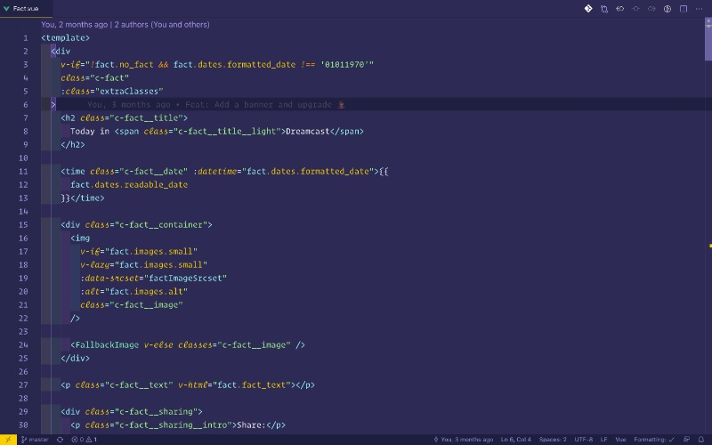 A sample of the Fact.vue file in VS Code